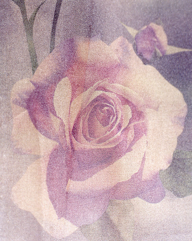 Archival pigment print, 40 x 50